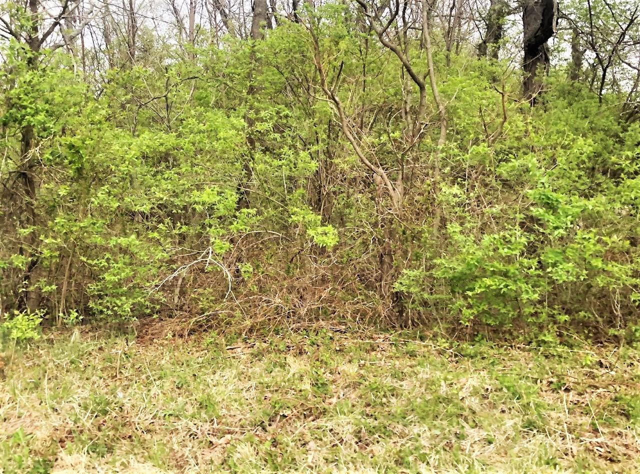 149 Lot Foster Maineville Rd Maineville OH