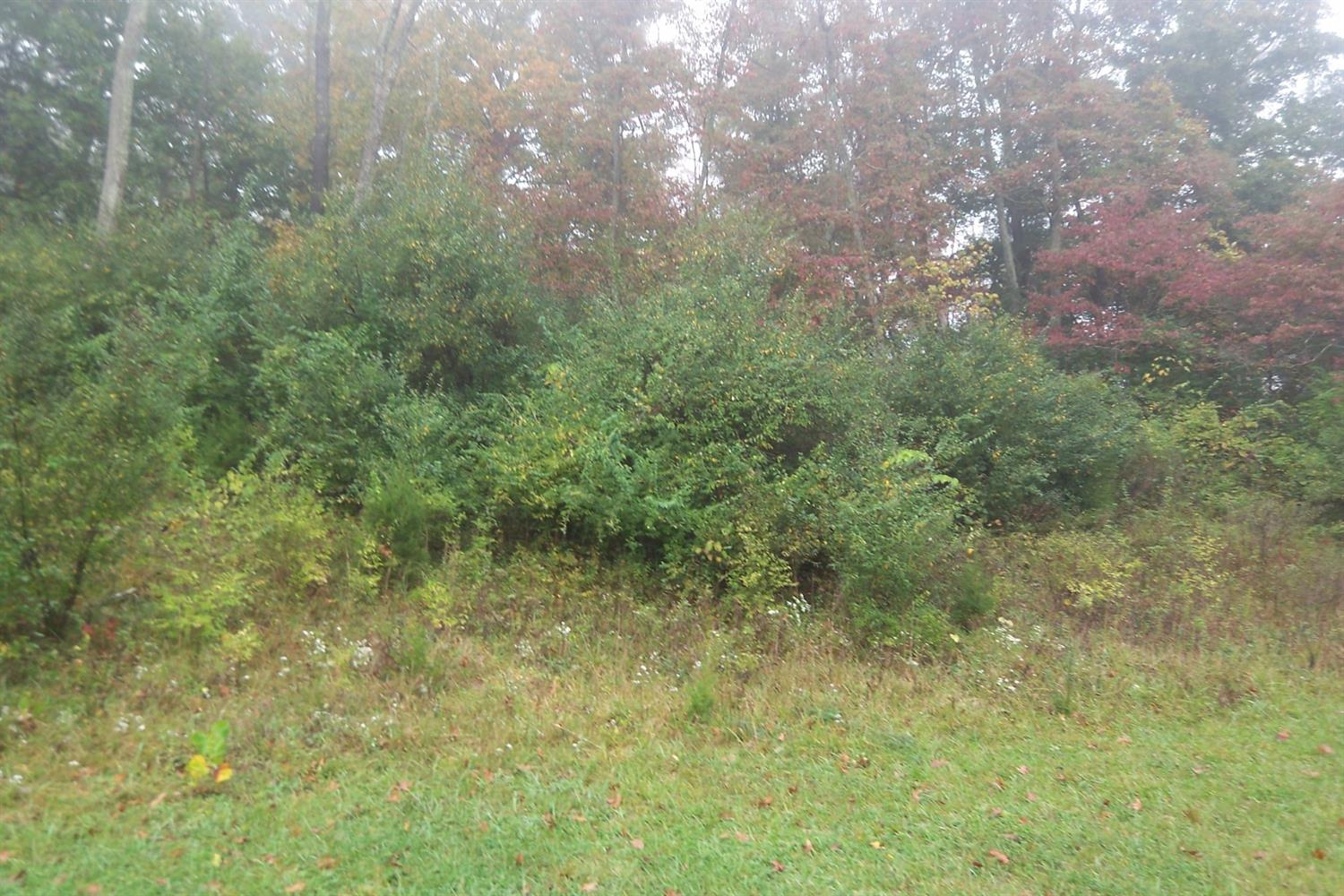 1 Lot  Brittney Dr
