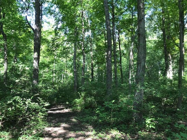 12.5ac Dade Rd Union Twp OH