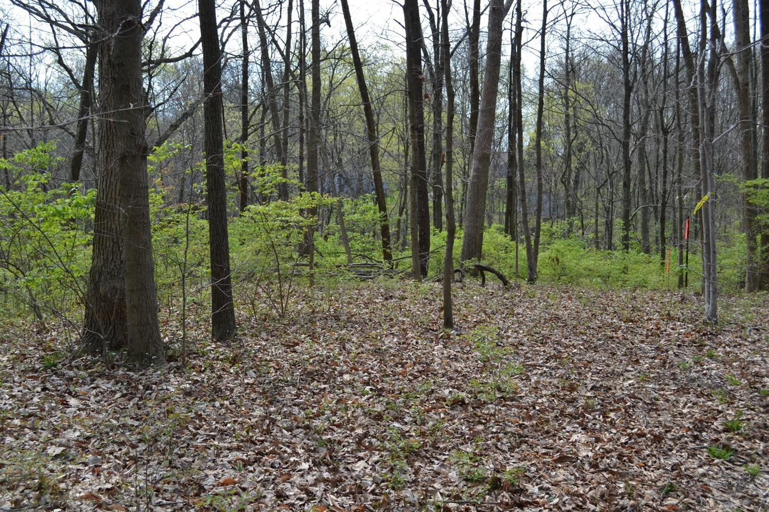 6.378ac Asher Rd Somers Twp OH