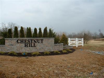 5  Chestnut Hill