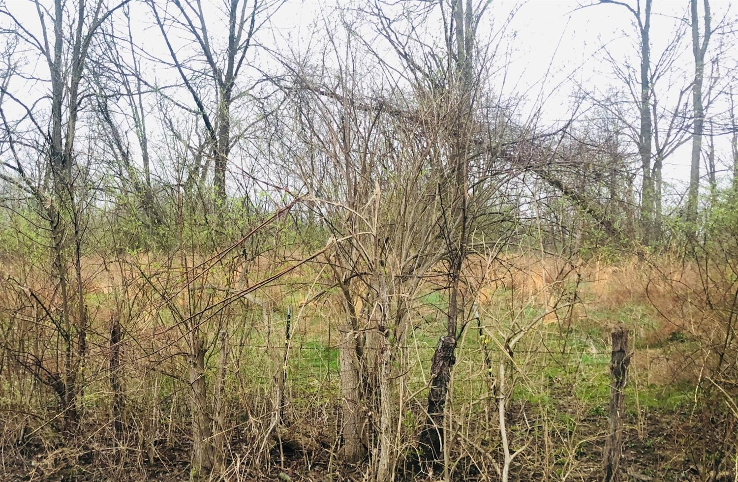 Lot Foster Maineville Rd Salem Twp OH