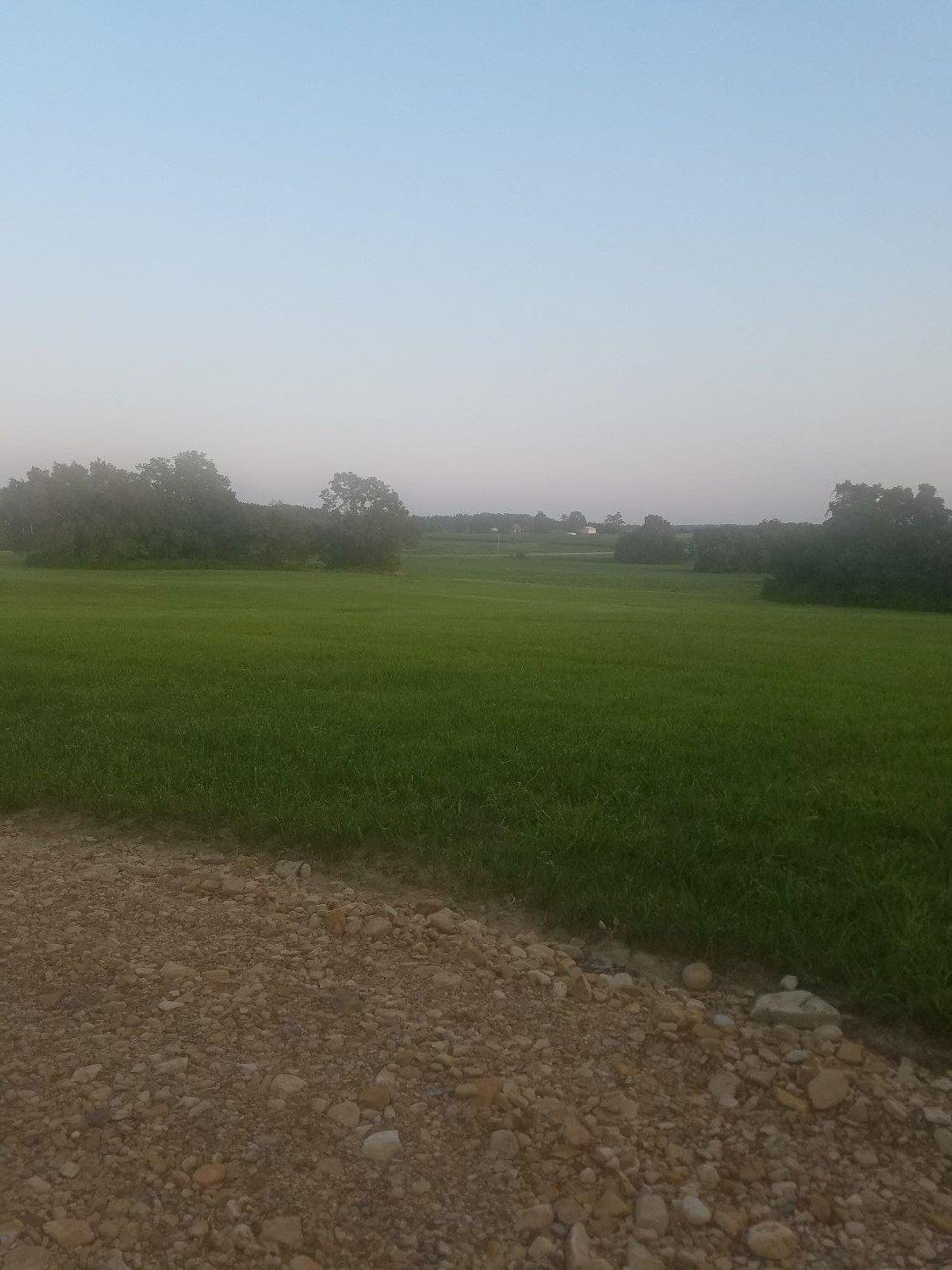 1.3ac Pioneer Dr Meigs Twp OH