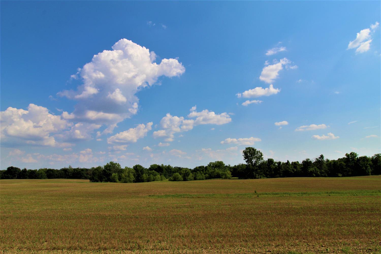 95.5ac Gettysburg Drake Rd Jefferson Twp OH