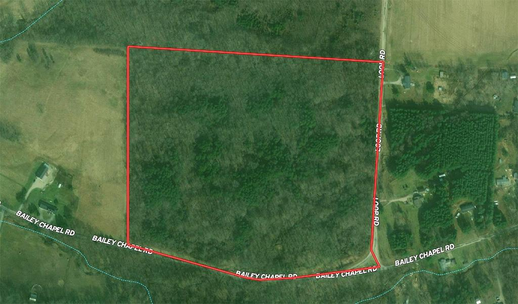 32.9ac Bailey Chapel Rd Scioto Twp OH
