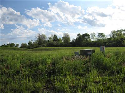 Turtle Shell Drive-Lot #29 VANDALIA OH