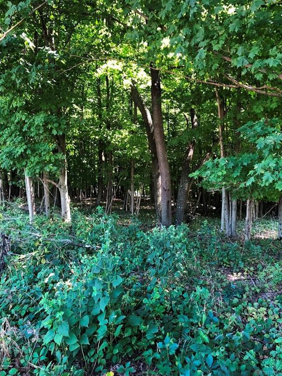 Woodlake Trail MTVERNON OH