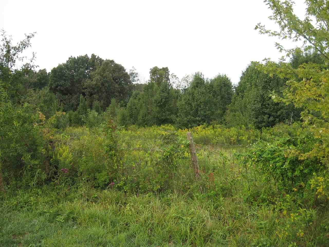 12.45 Acres  Alexandria Pike
