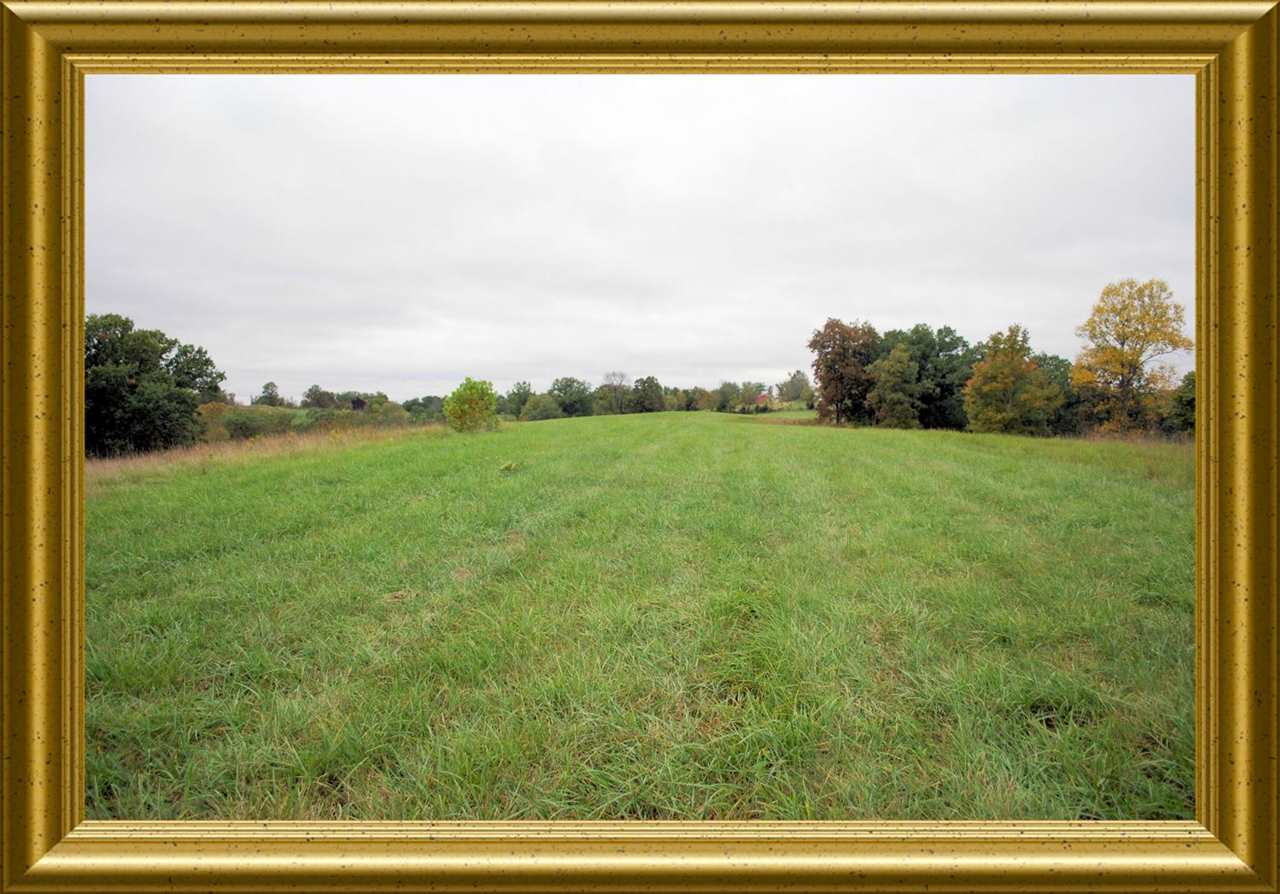 29.2 Acres Harrington Williamstw KY