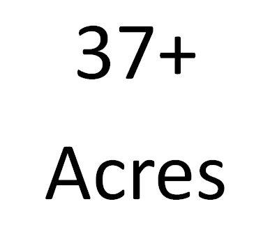 3123  Hulbert