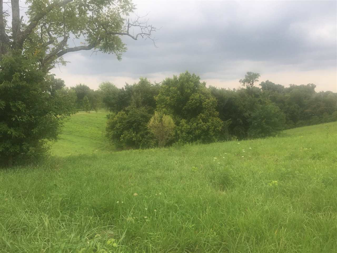 8.41 Acres Bethel Butler KY