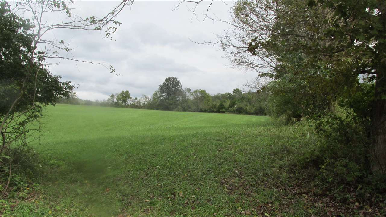 8 Acres Hwy 609 Butler KY