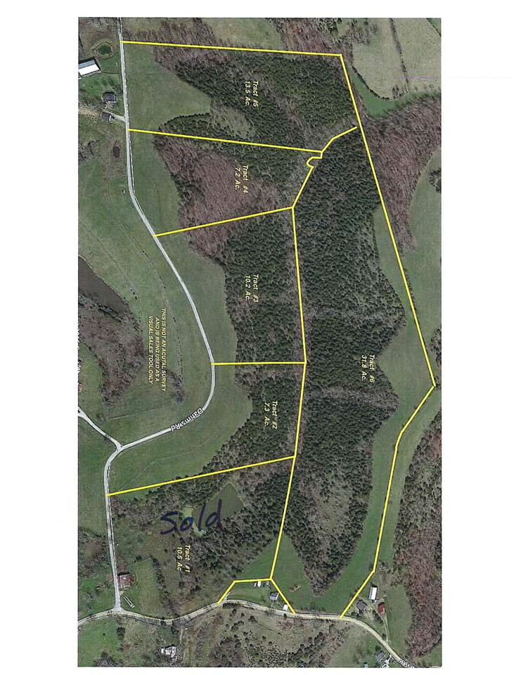 31.8 acres Highway 22 Falmouth KY