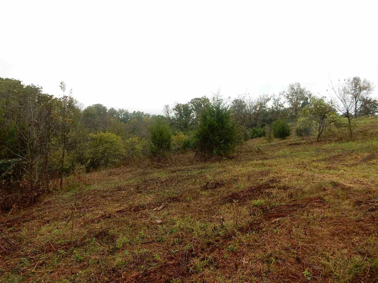 10 Acres Lincoln Ridge Road Williamstw KY