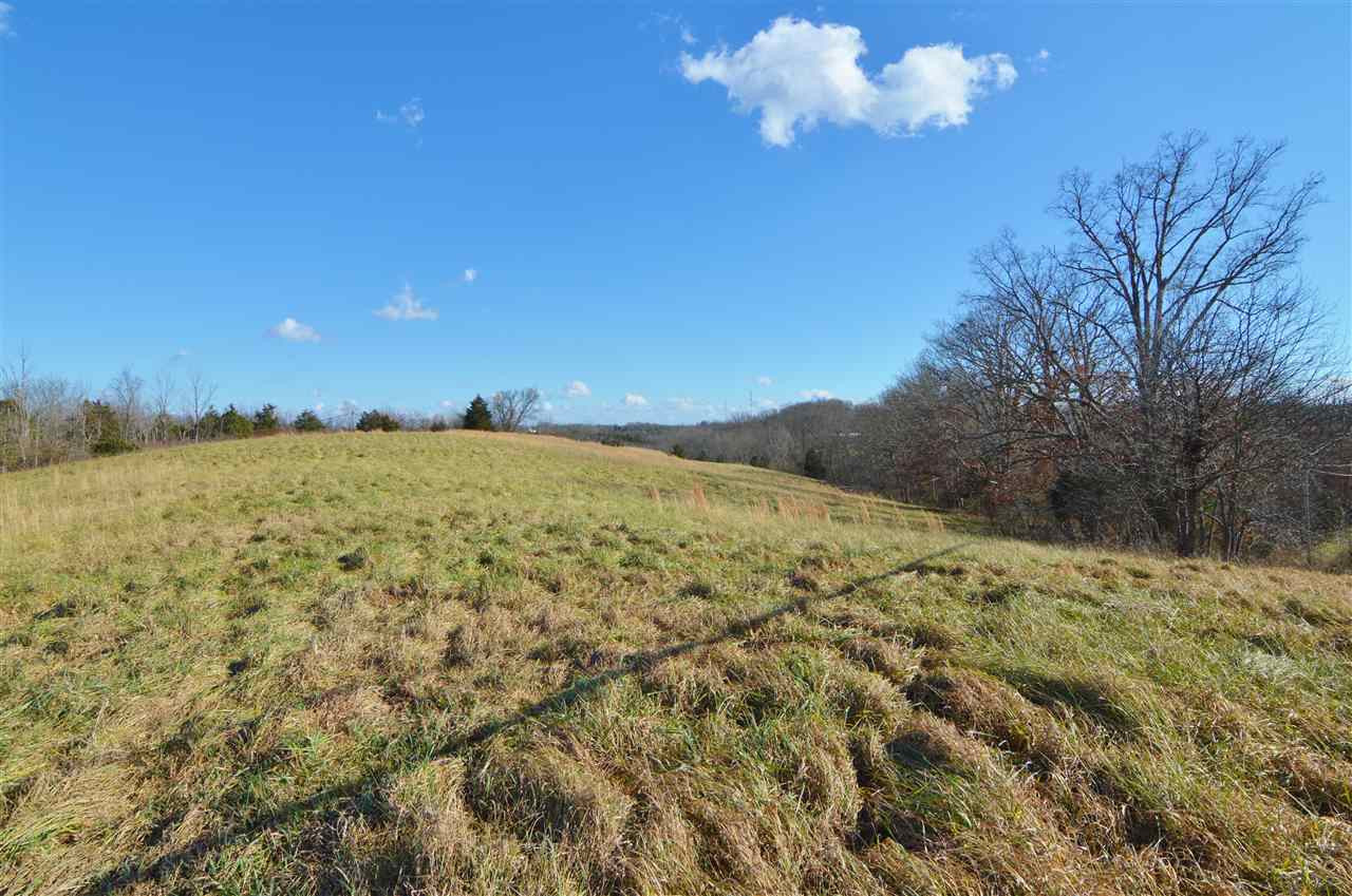 18 Acres KY Hwy 27 Falmouth KY