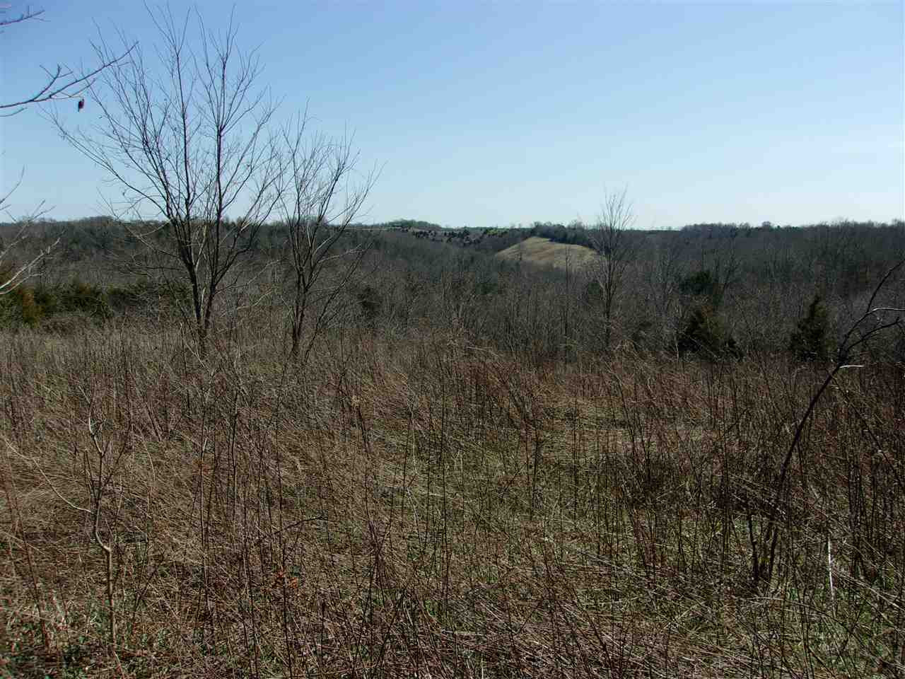 50 Ac Central Ridge Road Mt. Olivet KY