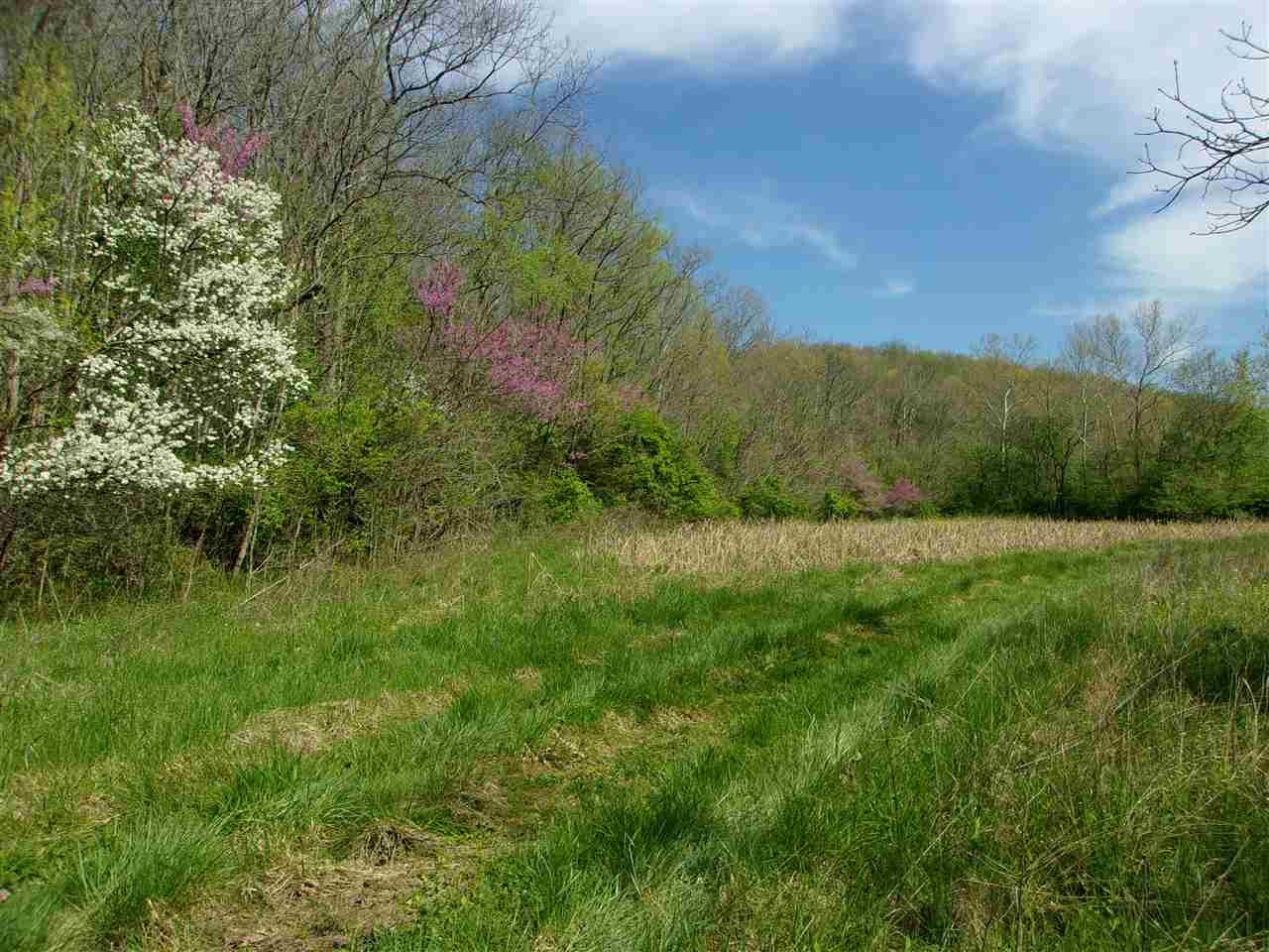 150 Ac Hwy 1159 Foster KY