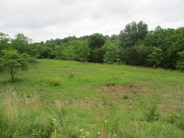 8.90 acres Kaylin Drive Falmouth KY