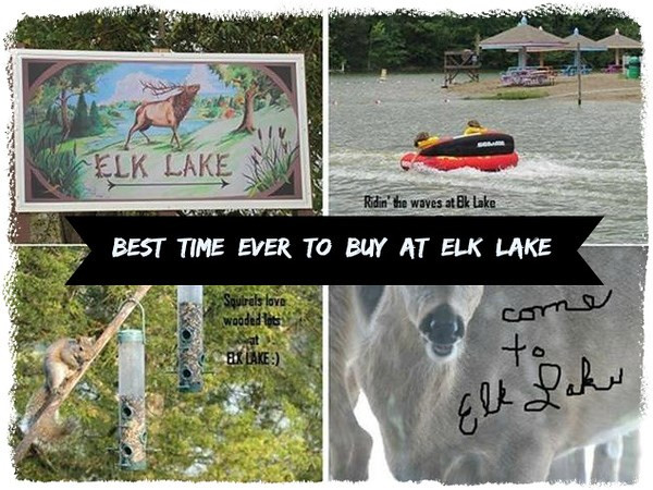 445 Elk Lake Resort , LOTs 1117-11 Owenton KY