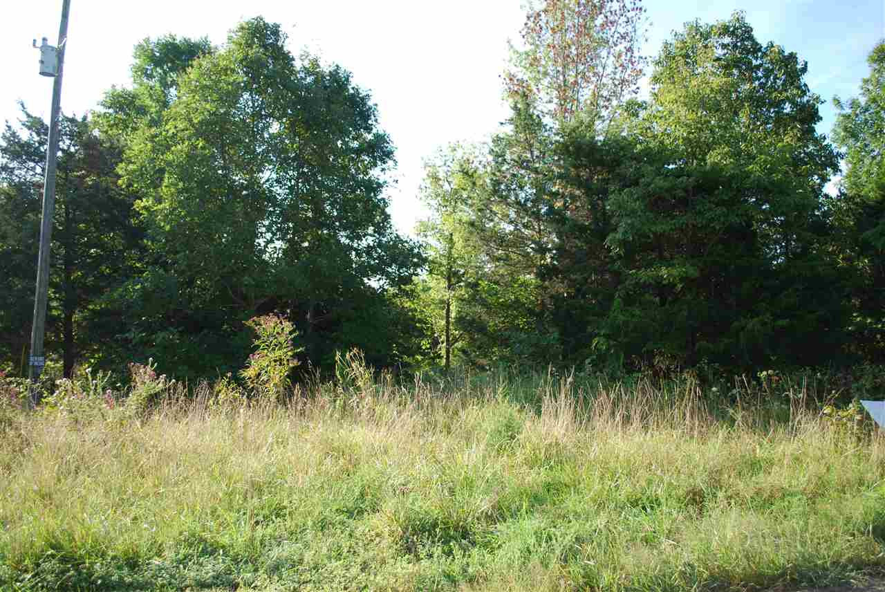 3.41 acres Brushy Creek Drive Williamstown KY