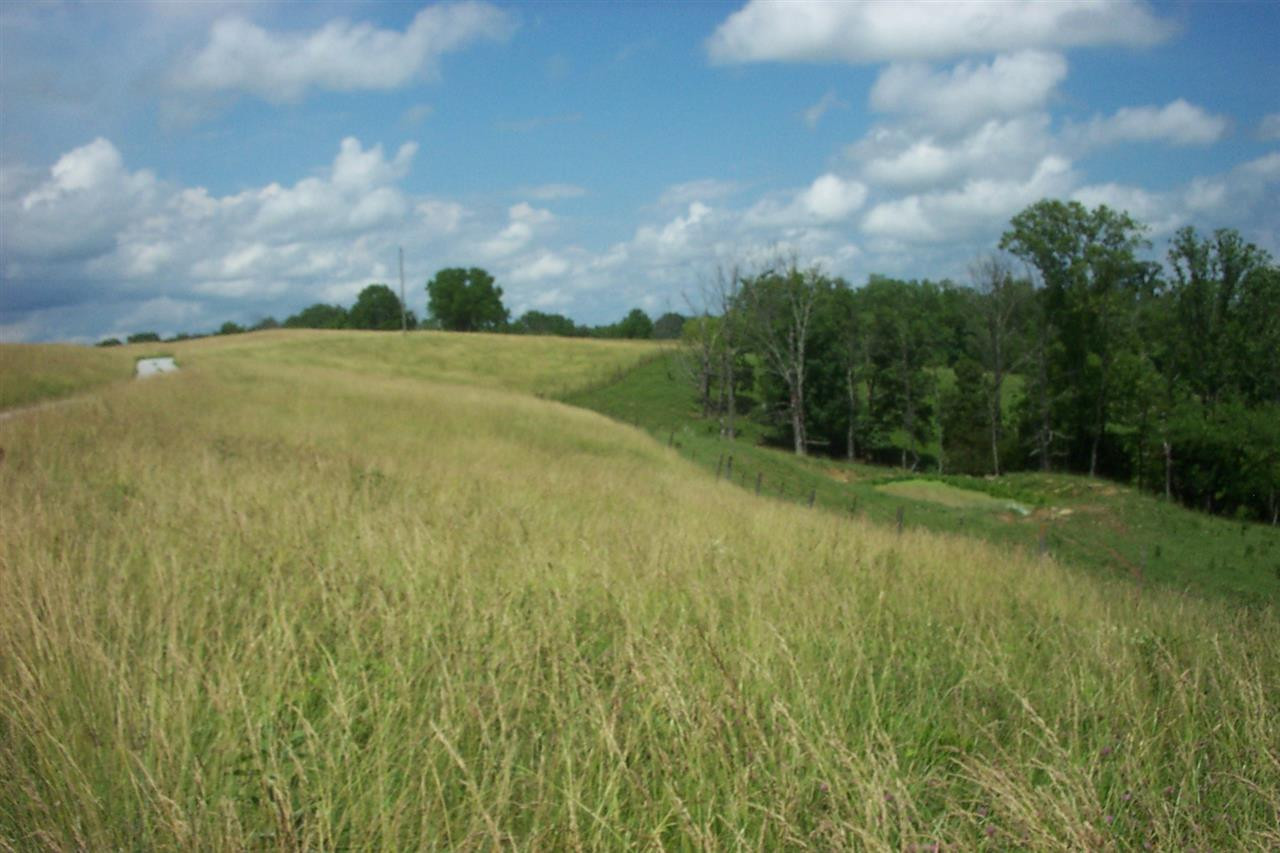 41.0761 Acres Castle Knoll Williamstown KY