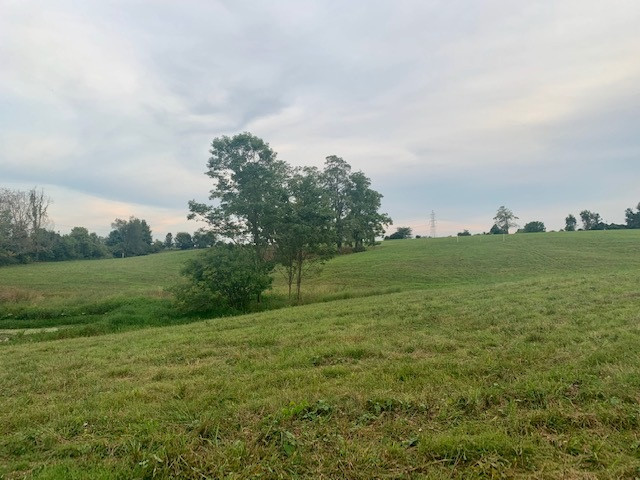 Lot #16 Eads Road Piner KY